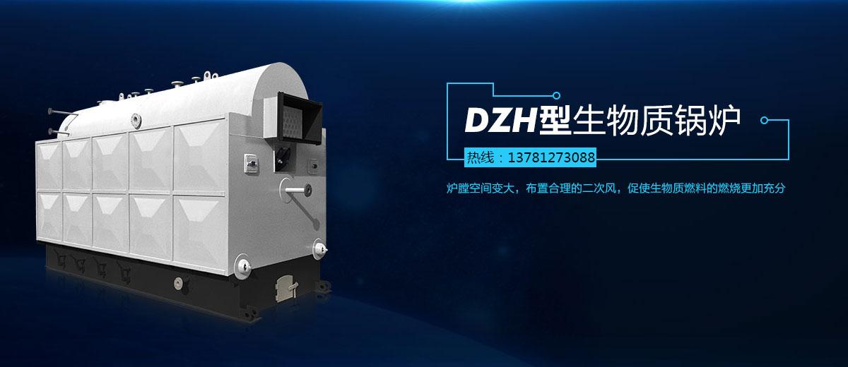 DZH型手烧生物质锅炉